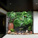 办公区域仿真植物墙01