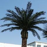 厂房仿真海藻树1