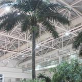 室内仿真椰子树案例图