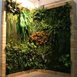 室内墙壁立体仿真植物墙01
