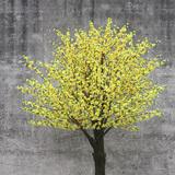 黄色桃花树