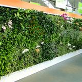 室外仿真植物墙展示02
