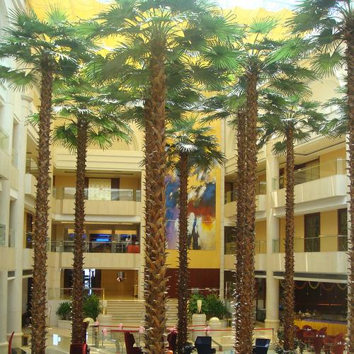 大楼内仿真棕榈树